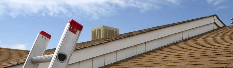 dak met ladder